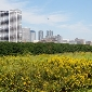 real estate restrictions on non farming use of agricultural lands in cities removed