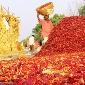 rules made easy farmer friendly policy in maharashtra